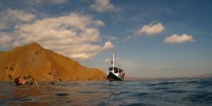 Plongée à Grand Spectacle dans les Iles Komodo !