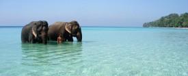 Photo de vacances sur une ile sympathique