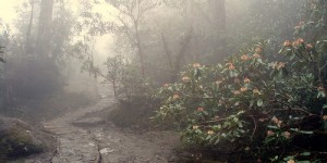 Trek himalaya, Jour 7, retour retour