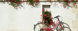 Velo et geranium rouges - Photo de France