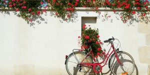 Velo et geranium rouges – Photo de France