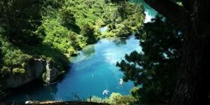 Photo de paysage de nouvelle zélande – rivière, forêt, arbre, couleurs vives