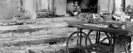 Enfant au marché