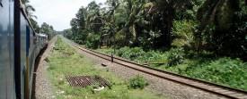 Sur la route du Kerala (Cochin - Ernakulam)