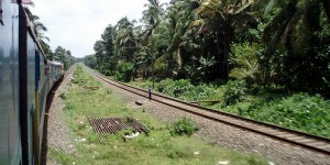 Sur la route du Kerala (Cochin – Ernakulam)