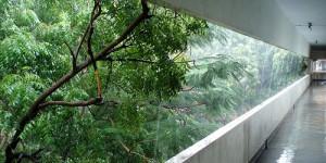 Pluie annonce de mousson ?