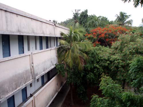 campus IIT madras 4